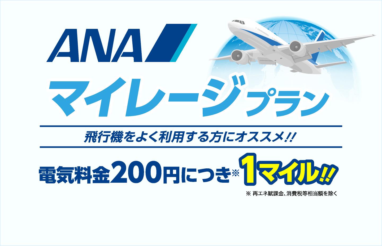 飛行機をよく利用する方におすすめ!ANAマイレージプラン