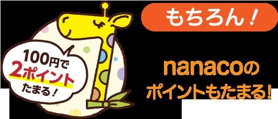 もちろん!nanacoのポイントもドンドンたまる!
